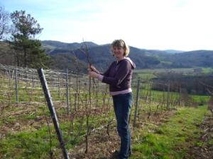 Catherine Bottex à la vigne - Cerdon